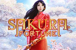 Play Sakura Fortune Slot