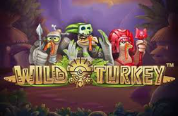 Play Wild Turkey Slot