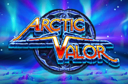 Slot Arctic Valor